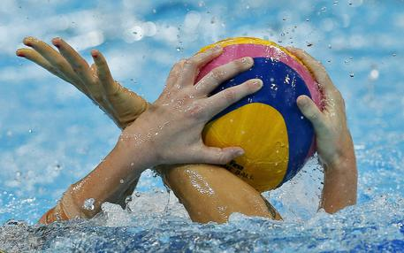https://www.cclaziowaterpolo.it/wp-content/uploads/2017/08/aeab05be27991d81639004f4a9b4fdcf.jpg